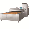 BDS-20D Electric 3 Trays Tunnel Oven For Bread